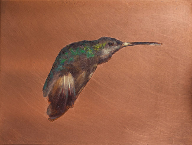 Humming Brid - 2x3 - oil on Copper - 2011